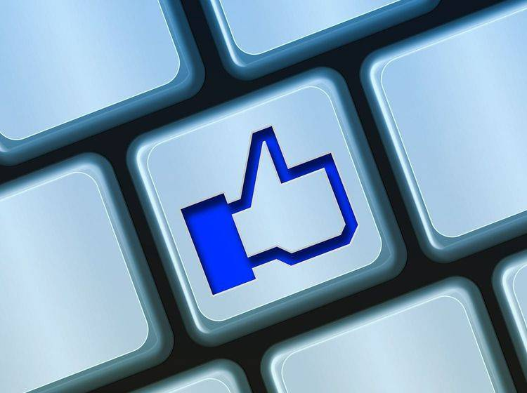 FB_Postings_Artikelbild_3