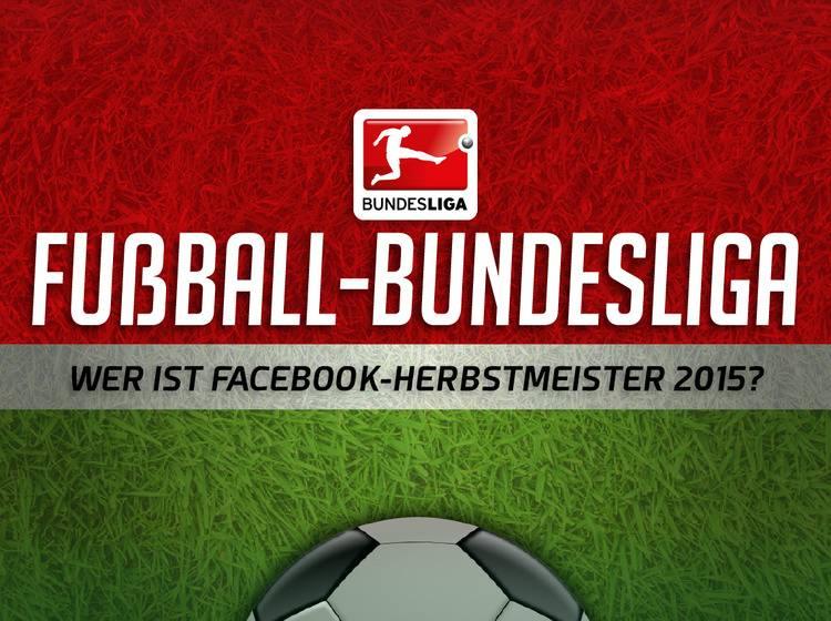 Grafik Fußball Bundesliga 2015