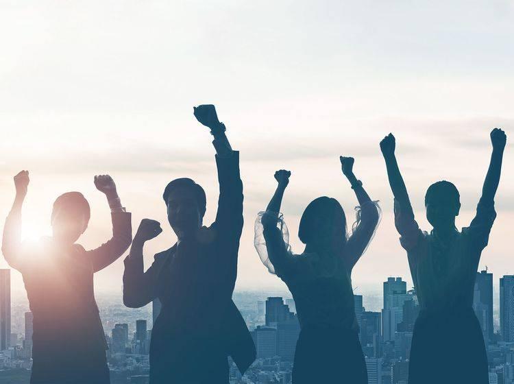 Content Fleet räumt bei den internationalen Content Marketing Awards ab