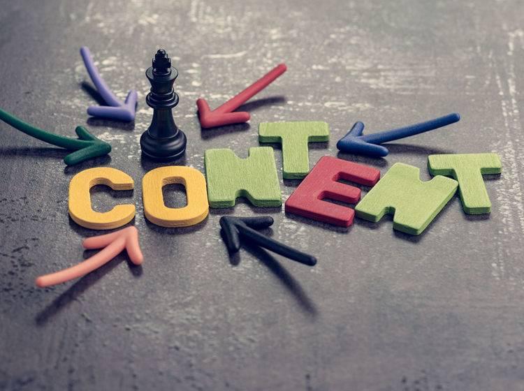 Hero-, Hub- oder Hygiene: Welche Content-Strategie ist die richtige?